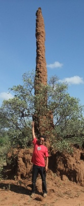 Bini_and_termite_mound_sm